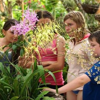 Vallarta Botanical Garden Nature Adventure Tour